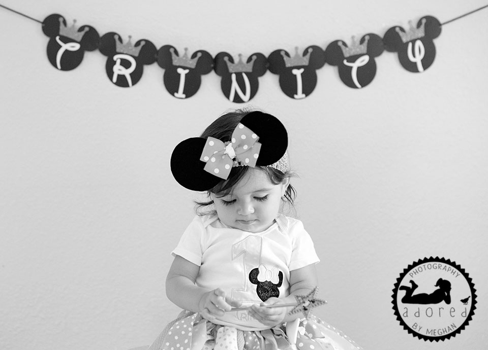 Tri-Cities-Portrait-Photographer-adored-by-meghan-rickard-kennewick-richland-pasco-first-birthday-cake-smash-2
