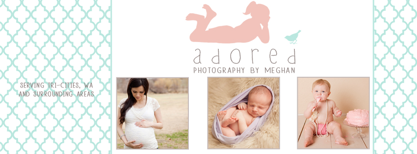 Adored by Meghan Kennewick Richland Pasco WA Photography e-newsletter sign up