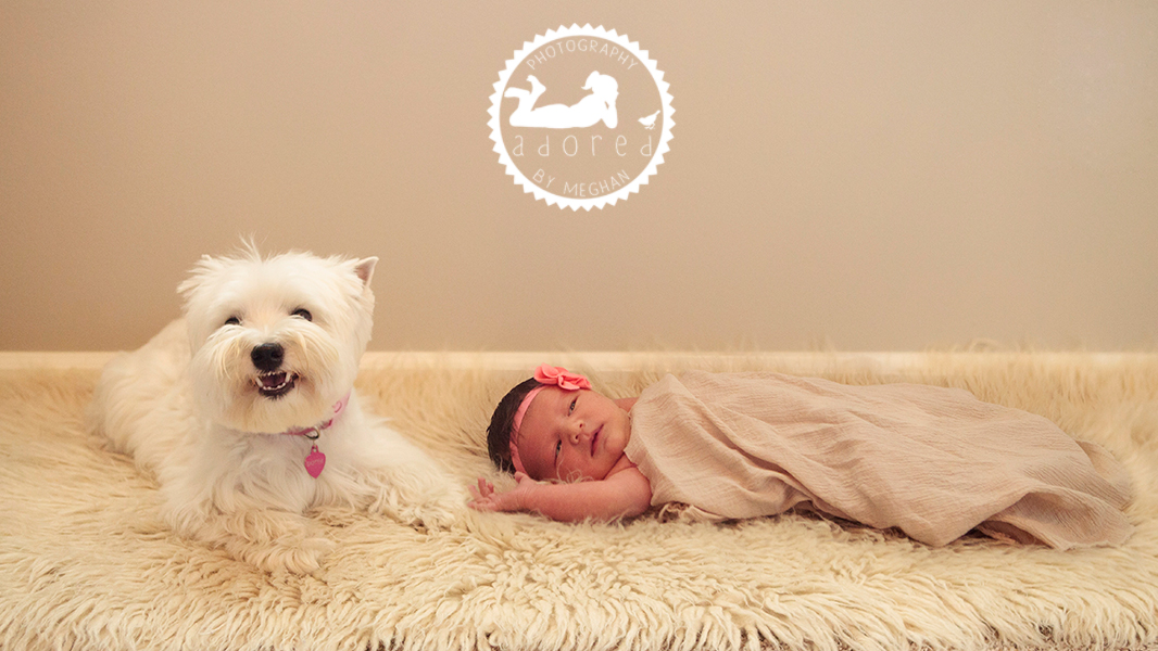 Lifestyle documentary storytelling Richland WA Newborn photographer adored by meghan rickard photography