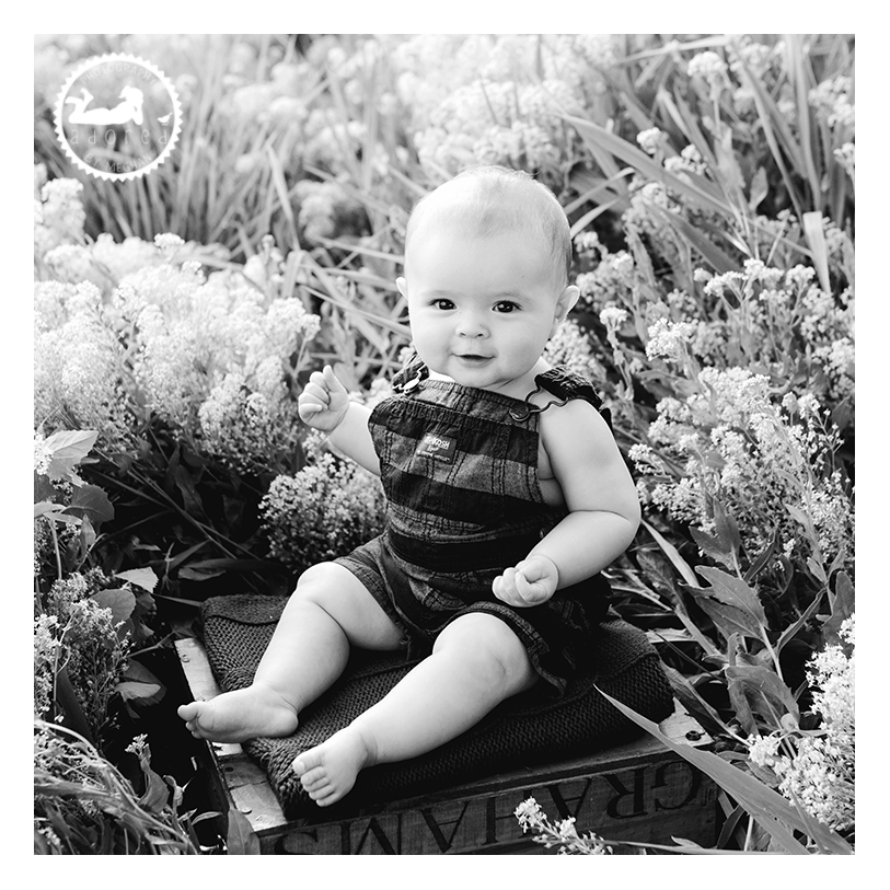 Take a short trip from Moses Lake to the Tri-Cities, WA to visit Adored by Meghan for your baby's photos