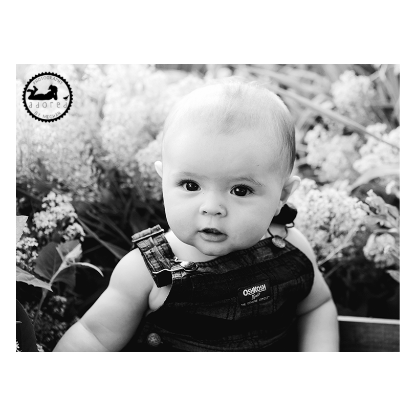 Favorite Black & White Baby Photo of 2015 Sweet baby boy in his overalls