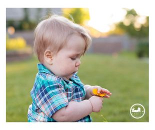 Cheeks & Chins : Baby photographer in Kennewick, WA, Adored by Meghan